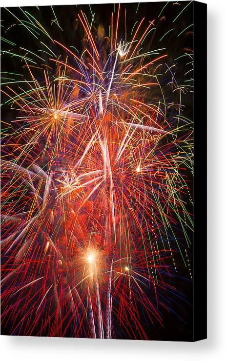 Fawesome Fireworks Lights Up The Darkness Canvas Print featuring the photograph Let Us Celebrate by Garry Gay