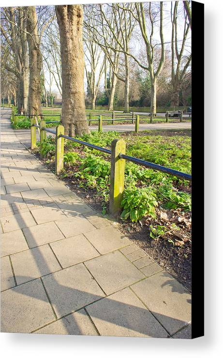 Board Canvas Print featuring the photograph London Park by Tom Gowanlock