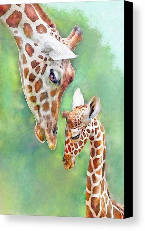 Jane Schnetlage Canvas Print featuring the digital art Loving Mother Giraffe2 by Jane Schnetlage