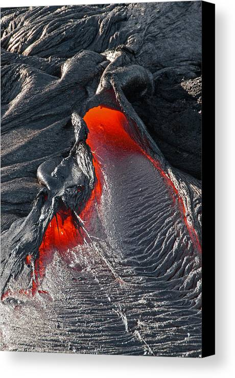 Hawaii Canvas Print featuring the photograph Nostrils Flare by Jim Southwell