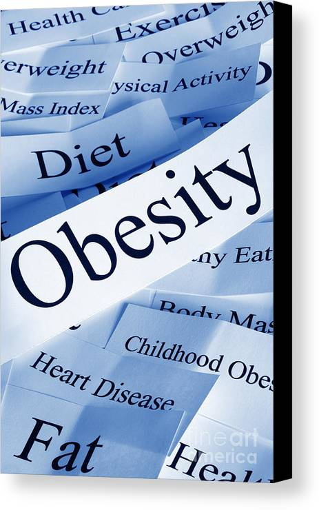 Concept Canvas Print featuring the photograph Obesity Concept by Colin and Linda McKie