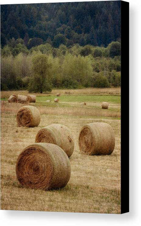 Oregon Canvas Print featuring the photograph Oregon Hay Bales by Carol Leigh