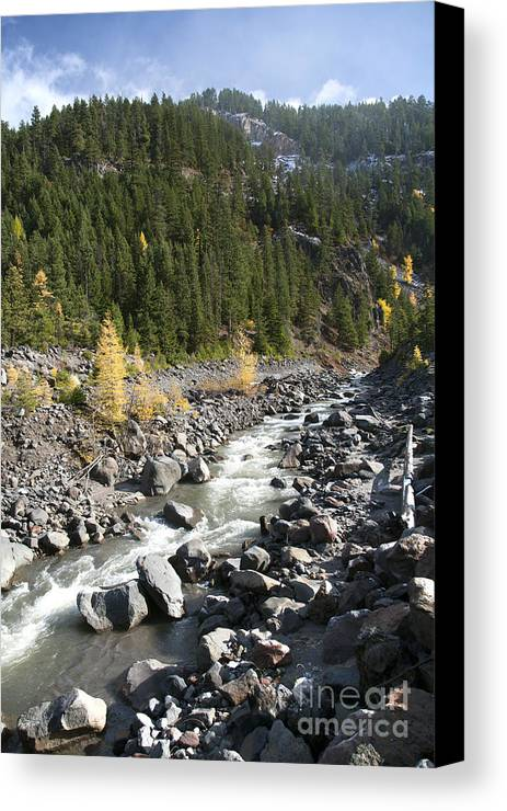 Color Canvas Print featuring the photograph Oregon Wilderness II by Peter French