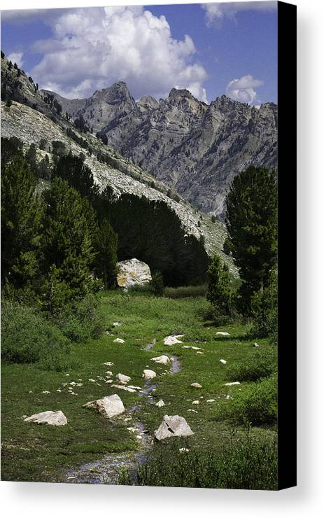 Ruby Mountains Canvas Print featuring the photograph Path Of Life Ruby Mountains Stock Trail by Karen W Meyer