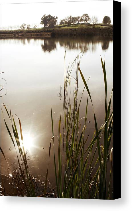 Water Canvas Print featuring the photograph Pond by Les Cunliffe
