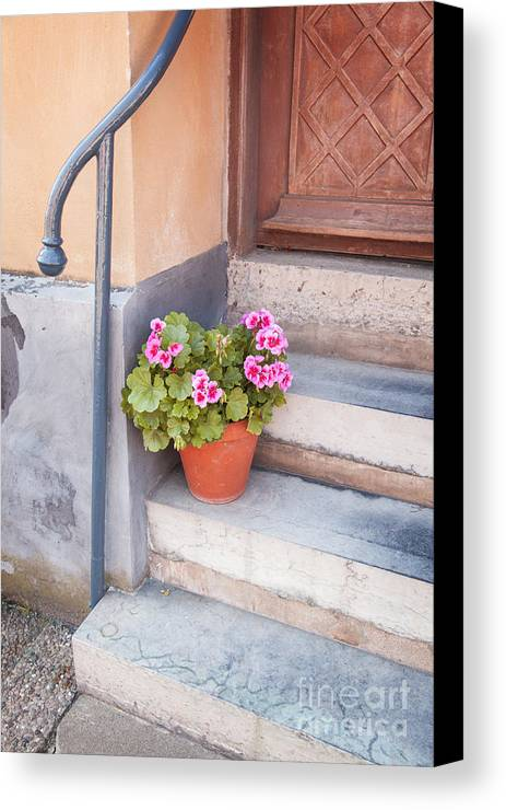 Village Canvas Print featuring the photograph Potted Plant Front Of House by Sophie McAulay