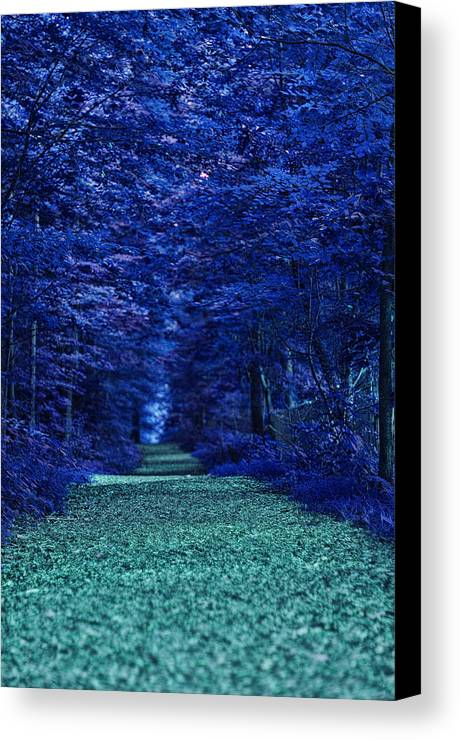 Nature Canvas Print featuring the photograph Purple Nature by Tina Baxter