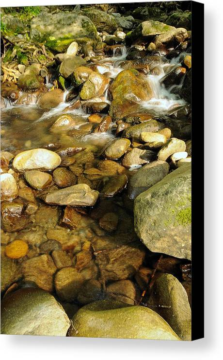 Rock Canvas Print featuring the photograph Rocks Abound by Jim Southwell