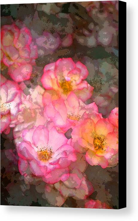 Floral Canvas Print featuring the photograph Rose 210 by Pamela Cooper