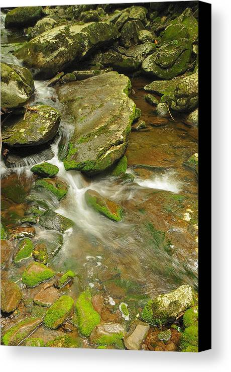 River Canvas Print featuring the photograph Run Like A River by Jim Southwell
