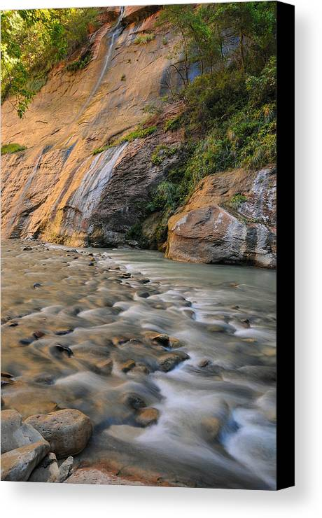 Zion Canvas Print featuring the photograph Run To The River by Jim Southwell