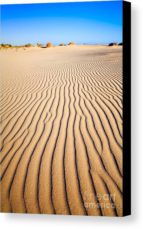 Sand Canvas Print featuring the photograph Sand Dunes At Eucla by Colin and Linda McKie