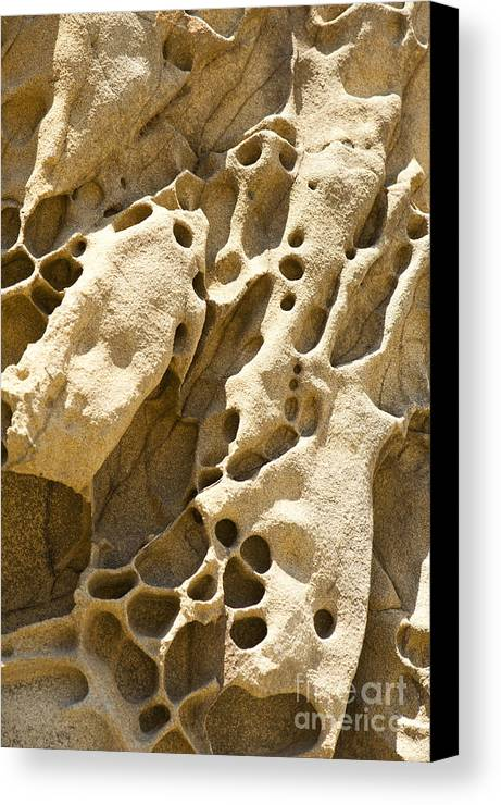 Point Lobos Canvas Print featuring the photograph Sandstone Rock Formation Two At Big Sur by Artist and Photographer Laura Wrede