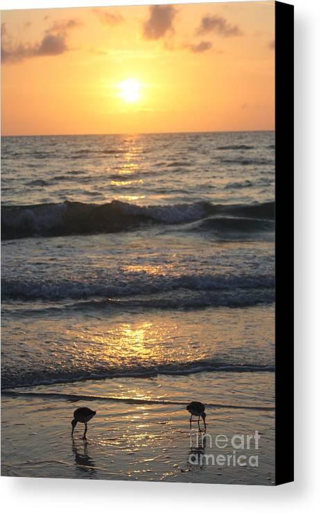 Seascape Canvas Print featuring the photograph Seascape Delight by Irina Davis