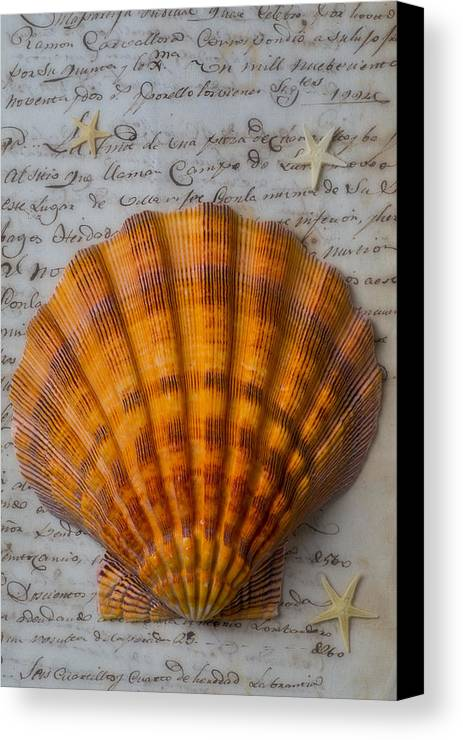 Seashells Canvas Print featuring the photograph Seashell And Words by Garry Gay