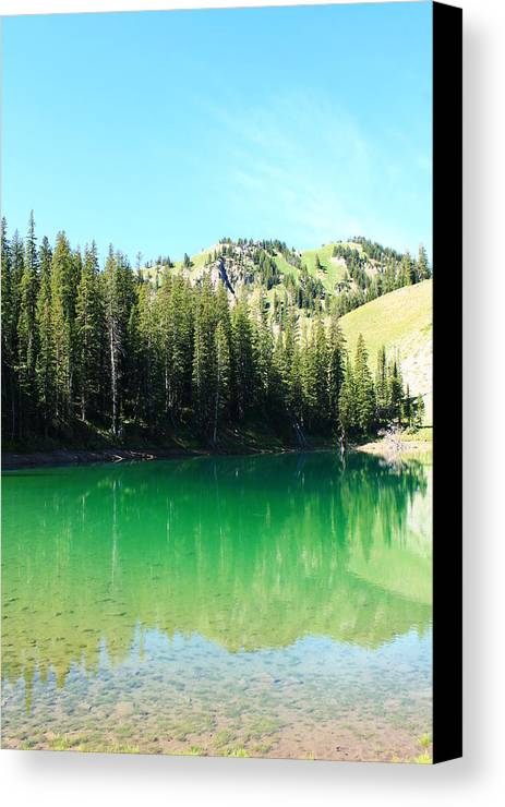 Glacier Lake Canvas Print featuring the photograph Sink On In by Catie Canetti