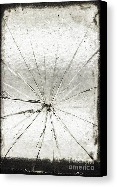 Glass Canvas Print featuring the photograph Smashing by Margie Hurwich