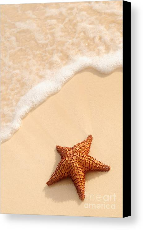 Starfish Canvas Print featuring the photograph Starfish And Ocean Wave by Elena Elisseeva
