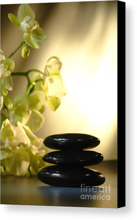 Orchid Canvas Print featuring the photograph Stone Cairn And Orchids by Olivier Le Queinec
