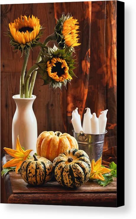 Pumpkin Canvas Print featuring the photograph Sunflower And Gourds Still Life by Amanda Elwell