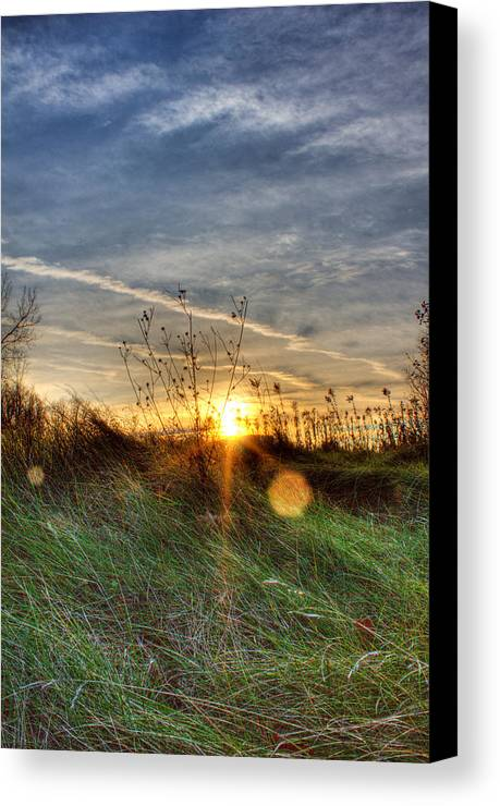 Sunrise Canvas Print featuring the photograph Sunrise Through Grass by Tim Buisman