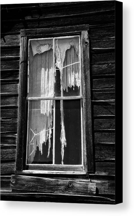 Black Canvas Print featuring the photograph Tattered And Torn by Cat Connor