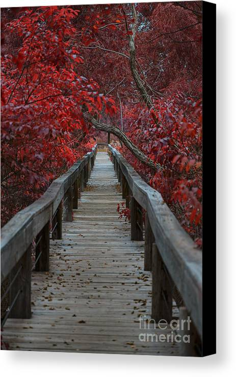 The Boardwalk Canvas Print featuring the photograph The Boardwalk by Douglas Barnard
