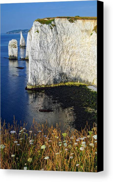 The Pinnacles Canvas Print featuring the photograph The Pinnacles by Darren Galpin