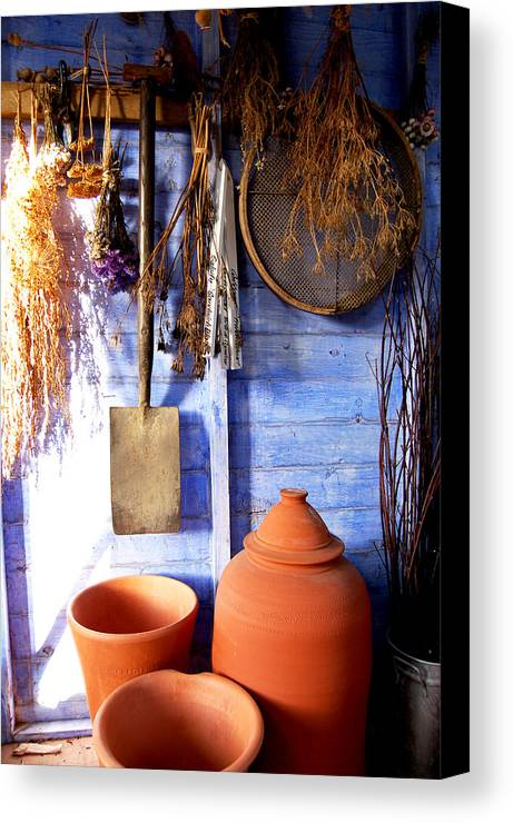 Rhubarb Forcer Dried Seed Heads Plant Pots Terracotta Lavender Drying Herbs Spade Sieve Garden Shed Earthenware Light In Darkness Interior Contentment Gardener's Joy Shabby Chic Royal Horticultural Society Harlow Carr Rhs Canvas Print featuring the painting The Potting Shed by Deborah Meyler