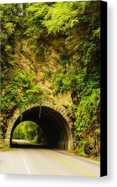 Road Canvas Print featuring the photograph The Short Way Home by Robert Hebert
