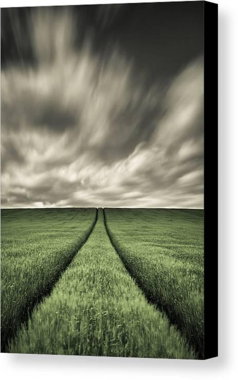 Farm Tracks Canvas Print featuring the photograph Tracks by Dave Bowman