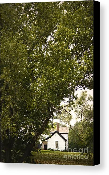 Trees; Many; Summer; Hidden; Hiding; Lush; Full; Leaves; Place; Outside; Outdoors; Nature; Landscape; Land; House; Home; Country; Countryside; Rural; White; Window; Secluded Canvas Print featuring the photograph Tree Covered by Margie Hurwich