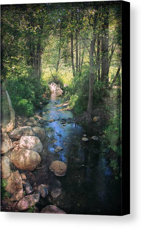 Idyllwild Canvas Print featuring the photograph Until I Loved You by Laurie Search