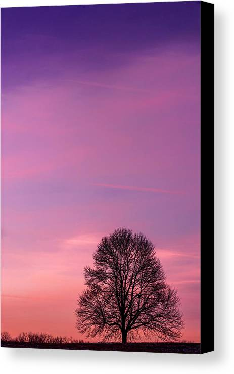 Autumn Canvas Print featuring the photograph Usa, Pennsylvania, King Of Prussia by Jaynes Gallery