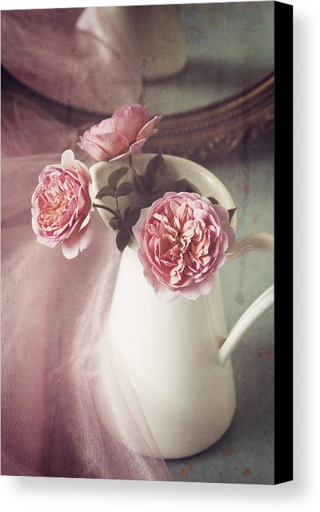 Rose Canvas Print featuring the photograph Vintage Pink by Amy Weiss