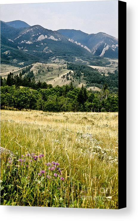 Wilderness Canvas Print featuring the photograph Washake Wilderness by Kathy McClure