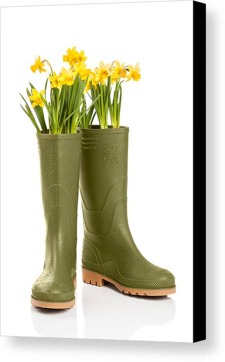 Spring Canvas Print featuring the photograph Wellington Boots by Amanda Elwell