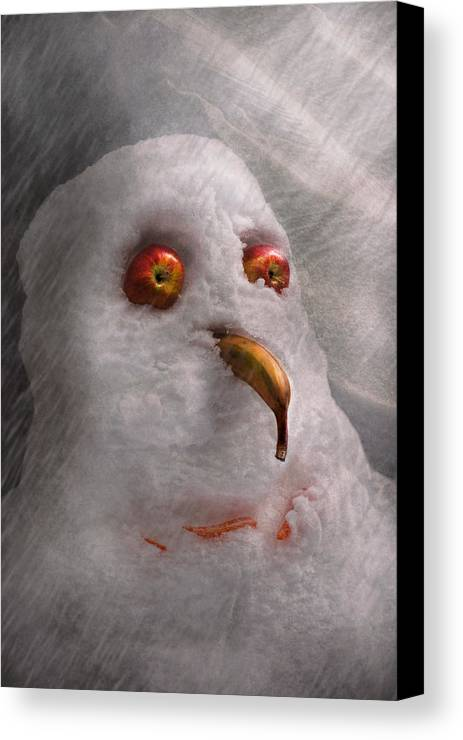 Winter Canvas Print featuring the photograph Winter - Snowman - What Are You Looking At by Mike Savad