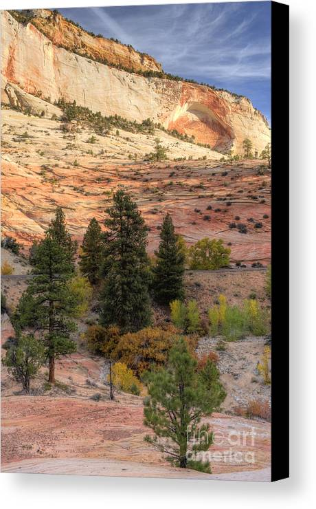 Hdr Canvas Print featuring the photograph East Zion Canyon Hdr by Sandra Bronstein