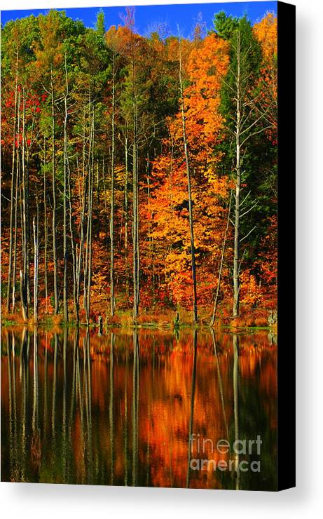 Leaves Canvas Print featuring the photograph Coxsackie New York State by Mark Gilman