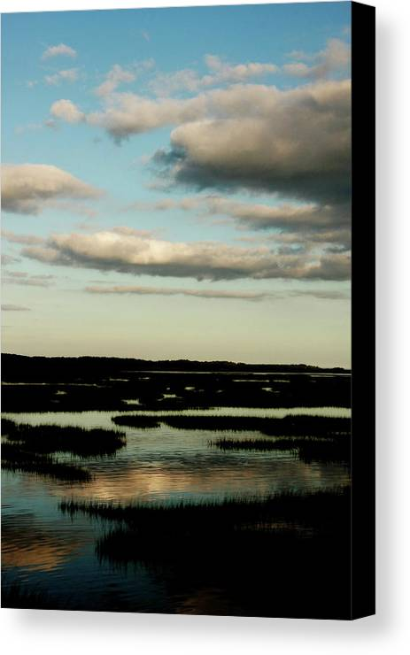 Lowcountry Canvas Print featuring the photograph Lowcountry Marsh Front by David Paul Murray