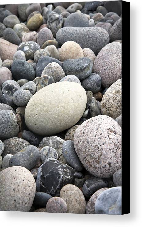 Pebbles Canvas Print featuring the photograph Pebbles by Frank Tschakert