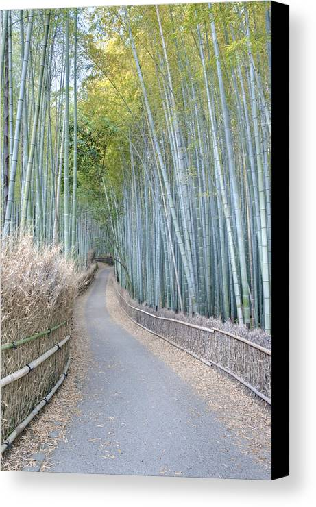 Photography Canvas Print featuring the photograph Asia Japan Kyoto Arashiyama Sagano by Rob Tilley