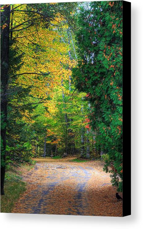 Autumn Canvas Print featuring the photograph Autumn by Kean Poh Chua