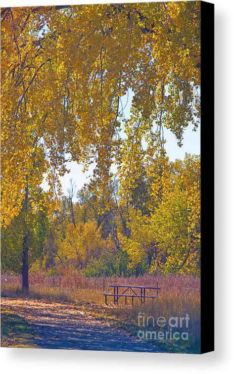 Picnic Canvas Print featuring the photograph Autumn Picnic Spot by James BO Insogna