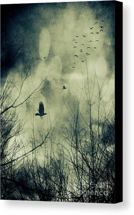 Atmosphere Canvas Print featuring the photograph Birds In Flight Against A Dark Sky by Sandra Cunningham