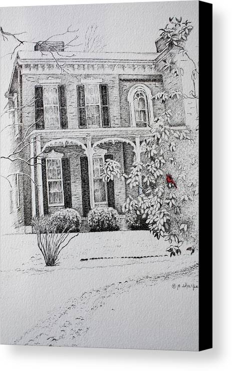 Historic Home Canvas Print featuring the drawing Cardinal by Patsy Sharpe