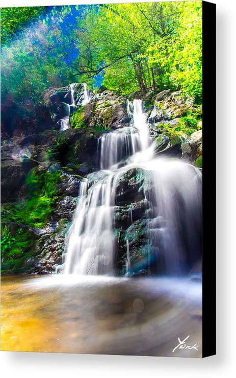Landscape Canvas Print featuring the pyrography Colorful Stream by Shane York
