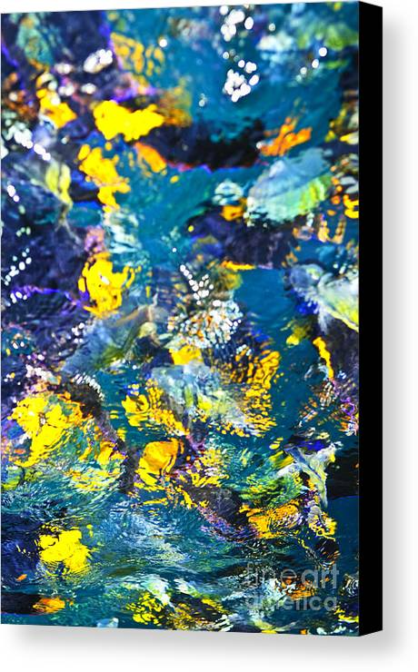 Fish Canvas Print featuring the photograph Colorful Tropical Fish by Elena Elisseeva