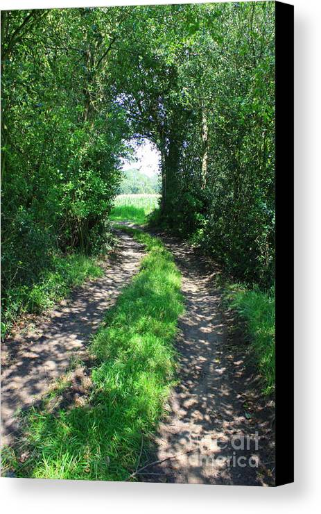 Country Road Canvas Print featuring the photograph Country Road by Carol Groenen